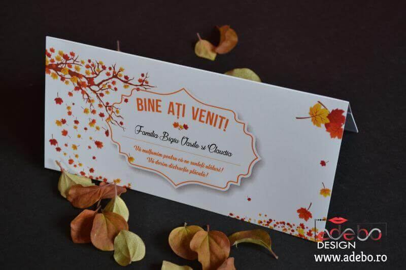 Invitatie Nunta AlesCri 6