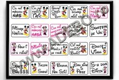 Propsuri botez Minnie si Mickey